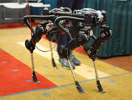 Koren_Quadrupede_Robot