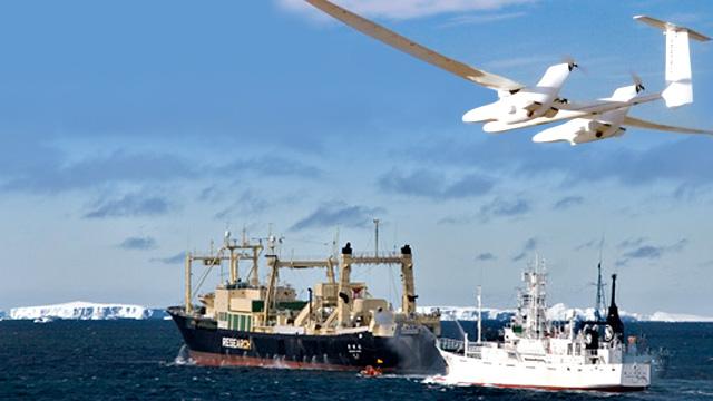 chasseurs de baleines drone