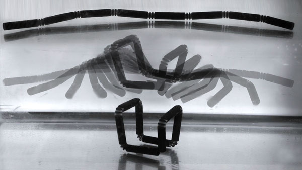Objet imprimé en 4D avec son animation.