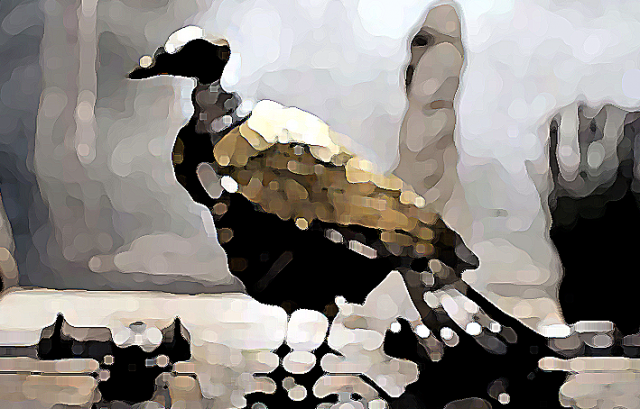 oiseau-robot